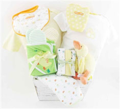 baby baskets 2178